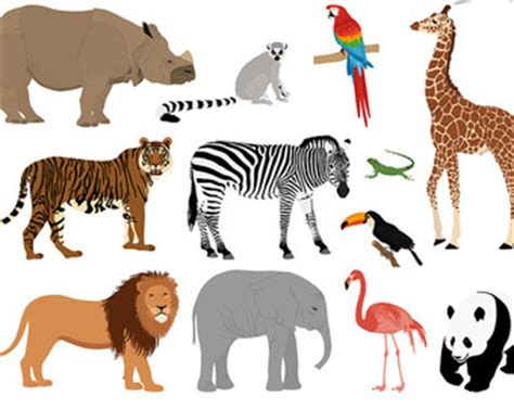 Zoos are good for animals essay